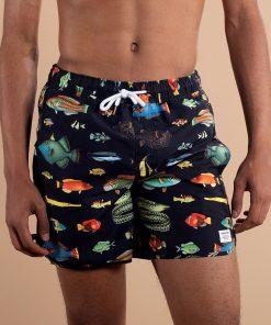 dedidcated-zwemshorts-fish