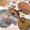 doing-goods-seahorse-deur-knop-links